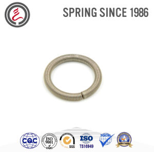 Elestic Element Springs Oil Seal Springs pictures & photos