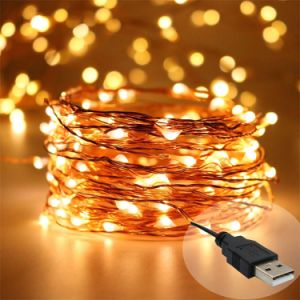 2018 5v 100 leds wholesale outdoor string lights usb plug fairy lights warm white