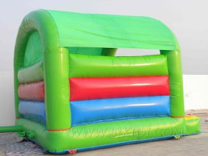 Bouncy Castle Inflatables (B1109) pictures & photos