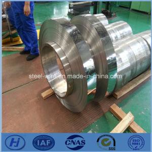 Cobalt steel strip