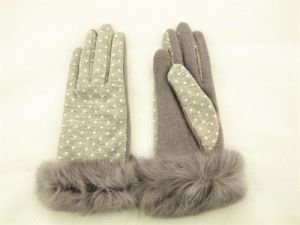 Lady Fashion Wool Gloves (JYG-25022) pictures & photos