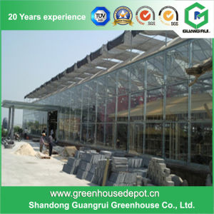 Popular Long Life-Span Venlo Structure Glass Greenhouse pictures & photos