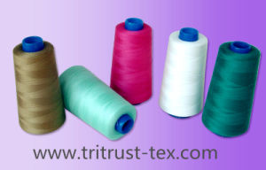(3/20s) Polyester Sewing Thread pictures & photos