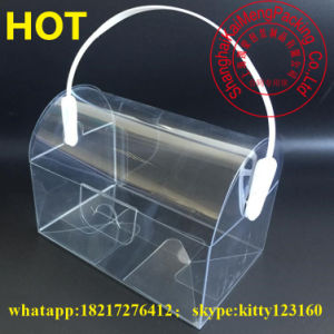 Handled Design Clear Cupcake Pet Plastic Storage Box Thailand