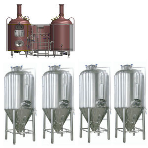 Turnkey Micro Beer Brewing System pictures & photos