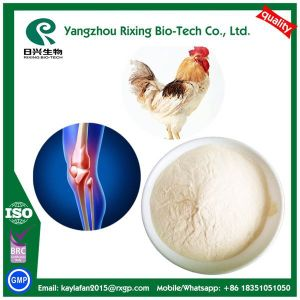 GMP Certified Chondroitin Sulfate Chicken Source Powder