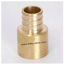 Brass Pex Sweat Adapter (PEX-006) pictures & photos