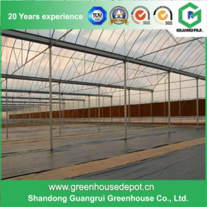 Hot Galvanized Steel Tubes for Greenhouse Construction pictures & photos