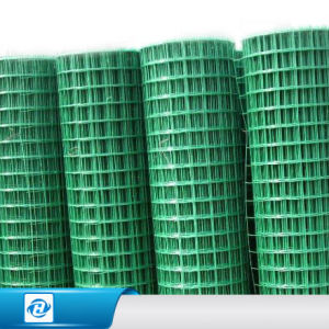 2x2 Pvc Coated Welded Wire Mesh For Plants Protection And Garden Fence
