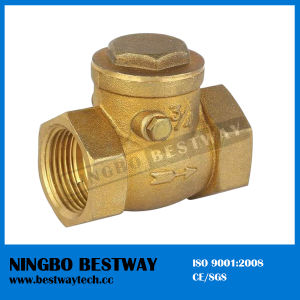 Brass Swing Check Valve (BW-C01A) pictures & photos
