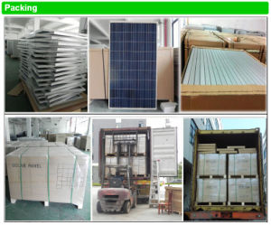 for Home Use From Chinese Factory High Quality Cheap Solar Solar Panel 150W pictures & photos