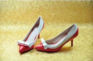 Fashion MID High Heel Pointed Toe Dress Shoes (HCY02-619)