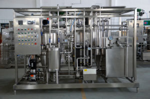 Full Automatic 300L/H Small Scale Milk Production Line pictures & photos