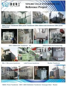 RW11-12/3~100 Isolator Fuse, 10 ~24kv, Fuse Cutout /Fuse Link/Break Switch Outdoor Drop-out Type Fuse pictures & photos