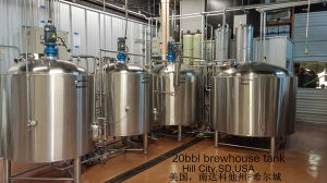600L Draft Beer Machine, Brewhouse Equipment, Brewery Fermentation Tank pictures & photos