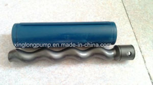 Rotor of Single Screw Pump pictures & photos