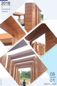 Strand Woven Bamboo Outdoor Decking pictures & photos