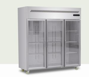 Upright Freezer with Glass Door pictures & photos