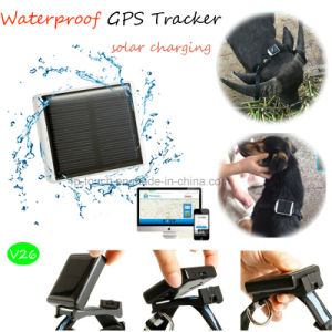 IP66 Waterproof Solar Charging GPS Tracking Device for Animals (V26) pictures & photos