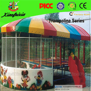 Custom Various Fashion Spring Trampoline for Sale pictures & photos