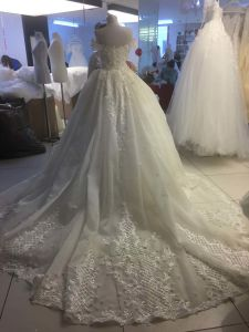 A-Line Bridal Gown Lace Beads Hollow Back Wedding Dress (Vt10006)