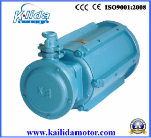 Fan Three-Phase Explosion Proof Motor pictures & photos