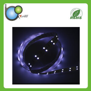 LED Lighting Decoration SMD5050 12V Purple LED Strip pictures & photos
