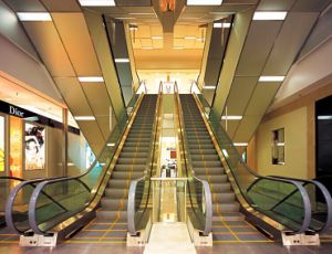 China Electric Commercial Escalator pictures & photos