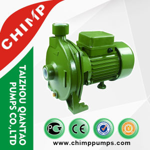 Cpm130 0.5HP Copper Wire Brass Impeller High Capacity Centrifugal Water Pump pictures & photos