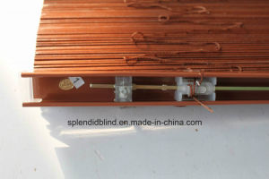 25mm/35mm/50mm American Basswood Solid Wood Blind (SGD-W-506) pictures & photos
