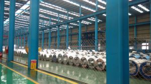 Hot Dipped Galvanized Steel Strips/Sheet pictures & photos