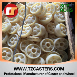 Fi≃ ED ⪞ Aster with Nylon Wheel FC150*50 pictures & photos