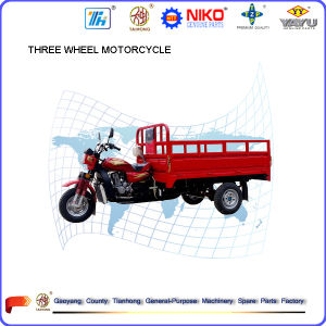 Hot Sale Brand Tianhong 150cc/175cc/200cc/250cc/300cc Three Wheel Cargo Motorcycles pictures & photos