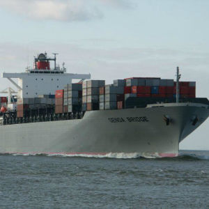 Sea/Ocean Shipping Freight Agent From China to Santos/Brazil