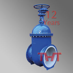 Resilient Wedge Slab Gate Valve