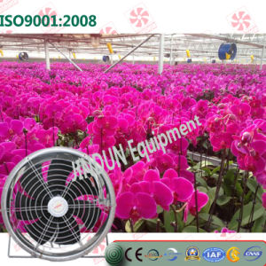 Hanging Type Energy Saving Cooling Fan for Greenhouses