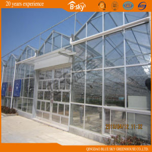 Picking Garden Glass Greenhouse with Top PC Sheet pictures & photos