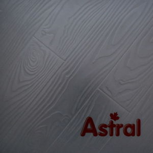 Registered Embossed Surface (V-Groove) Laminate Flooring (AT006) pictures & photos