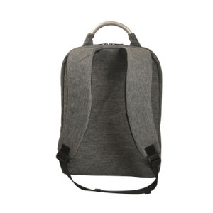 Backpack for 15.6 Inch Laptop with High Quality (SB6460) pictures & photos