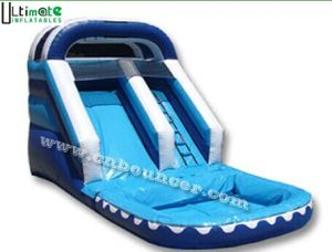 Giant Single Lane Inflatable Water Slides