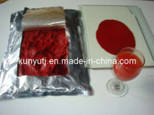 Tomato Paste in Drum with High Quality pictures & photos