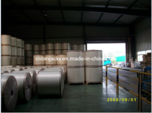 Spunbond Polyester Fabric - Waterproofing Bitumen Membrane pictures & photos