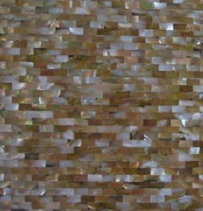 Hot Sale Raw Mother of Pearl Shells Mosaic for Sale