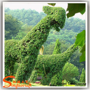 Artificial Boxwood Hedge Animal Artificial Plants Topiary for Garden Decoration pictures & photos