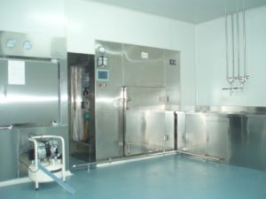 Depyrogen Sterilizer pictures & photos