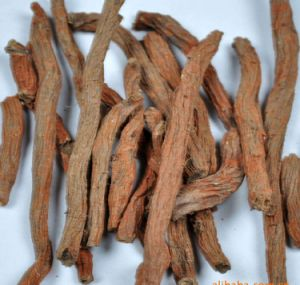 Tanshinone Danshen Root Extract for Foods and Supplement pictures & photos