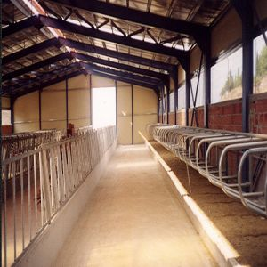 Professional Design Low Cost Steel Structural Cow Farm House With Competitive Price