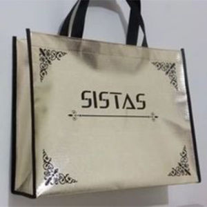 Reusable Eco Green Woven PP Laminated Shopping Bag (LJ-350)