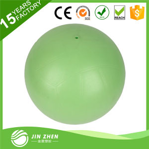 Inflatable Volleyball Beach Ball PVC Toy Kids 25cm