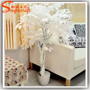 Home Decoration White Fake Plastic Artificial Ficus Tree pictures & photos